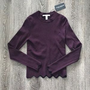 NWT autumn cashmere tipped scalloped sweater